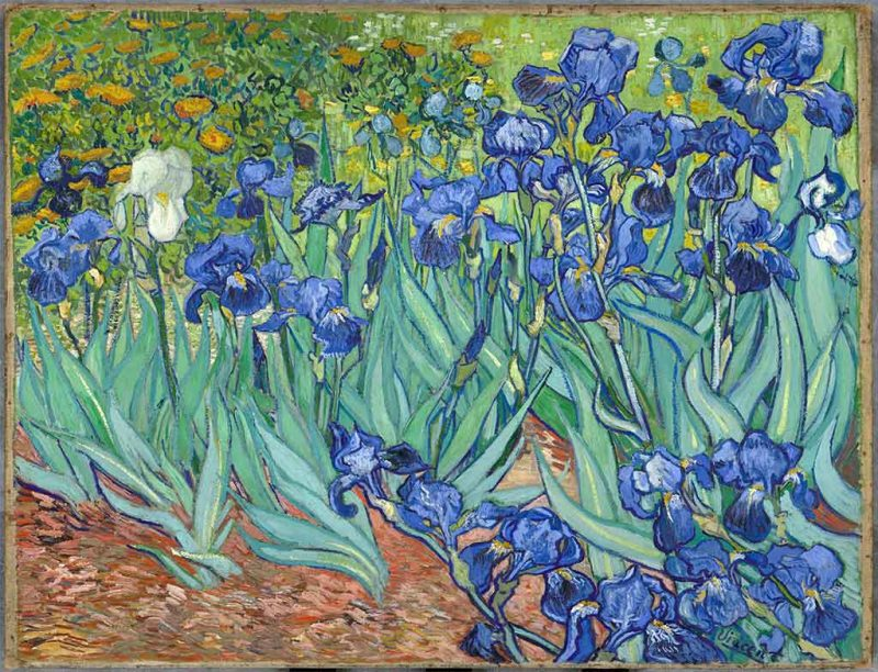 Vincent van Gogh. Iris, 1889